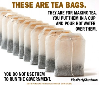 teapartyshutdown